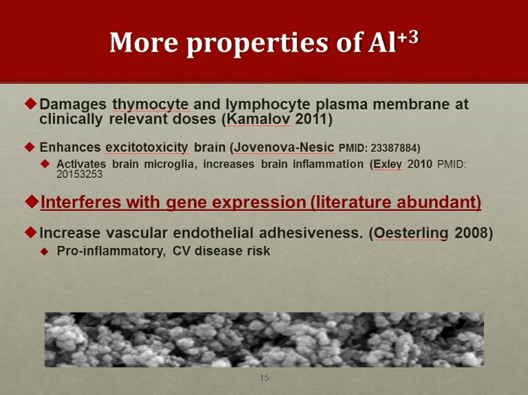 More-Properties-of-Aluminum-toxicity